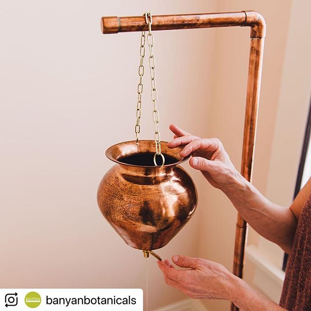 "@banyanbotanicals (@make_repost) ・・・ Did you know that today, November 5th, is International Ayurveda Day? Nationally recognized by the government of India and Ministry of Ayush, this special day is celebrated as part of the Dhanvantari Jayanti festival honoring Lord Dhanvantari, the deity in Hinduism associated with Ayurveda and health. ⠀⁣ ⠀⁣ Whether you're in India, the United States, or elsewhere in the world, here are some ways you can honor Ayurveda and yourself today:⠀⁣ ⠀⁣ 🌿Spend time in nature⠀⁣ 🌿Meditate⠀⁣ 🌿Attend a yoga class⠀⁣ 🌿Eat kitchari⠀⁣ 🌿Receive an Ayurvedic treatment like shirodhara, pictured here. (Visit the ""Insight Blog"" category of the linktr.ee in our profile to read our most recent blog article on this subject!) ⠀⁣ ⠀⁣ How are you celebrating Ayurveda day today? Tell us below in the comments! ⠀⁣ Visit our website for Ayurvedic remedies, recipes and self care! Link in bio. ⠀⁣ #banyanbotanicals #livingbanyan #dhanvantari #dhanvantarijayanti #ayurveda #ayurvedaday #ayush #ayurvedapanchakarma #ayurvedaoil #ayurvedarocks #ayurvedaforlife #ayurvedayoga⠀⁣ #shirodhara #mentalrelaxation #abhyanga #ayuverdalifestyle #ayurvedic #herbs #india #natural ⠀⁣ #wellness #wellnesswithin #wellnessjourney #wellnessdestination #selfcare #selfcarematters #selfcareissacred"
