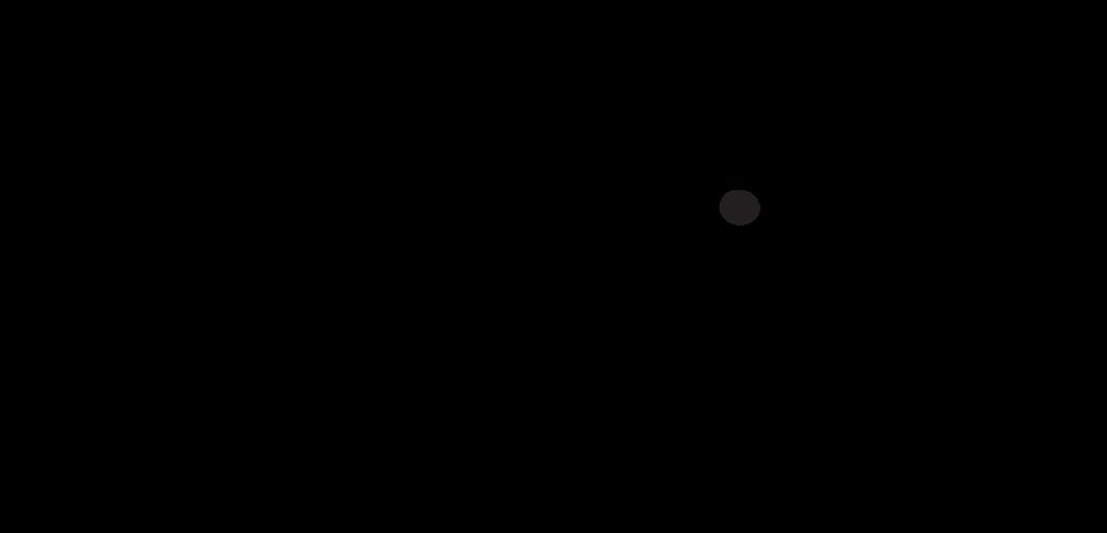 ollie social logo .png