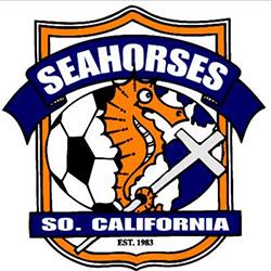 so-cal-seahorses.jpg