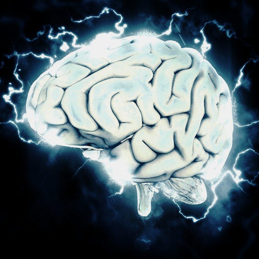 Det Hvide Snit var et kirurgisk indgreb i hjernen som blev foretaget på personer med psykiskelidelser. Man testede folk i forskellige typer af opgaver og gåder, og vurderede herefter deres mentale tilstand. Indgrebet blev senere strengt forbudt, men opgaverne blev skrevet ned og gemt, så man senere kunne udvikle på metoden. De opgaver som blev gemt, er vi kommet i besiddelse af og har genskabt. -