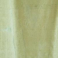 Poplar/Tulipwood