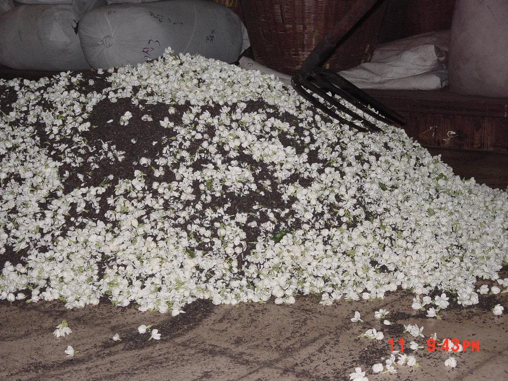 窨花 - 精製廠的生產作業之一,非一般精製流程。 利用茶葉吸香、香花吐香的原理,製作吸入花香之茶葉,通稱花茶、或包種花茶。通常在茶前面冠以所窨花名:如茉莉花茶、桂花茶等。 內銷市場所售香片,多指用茉莉花窨製之茶。花茶的品質,除了窨花次數多寡及所用花之種類和數量外,茶胚品質也很重要。
