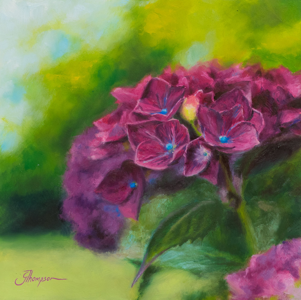 Hydrangeas in the Summer - SOLD