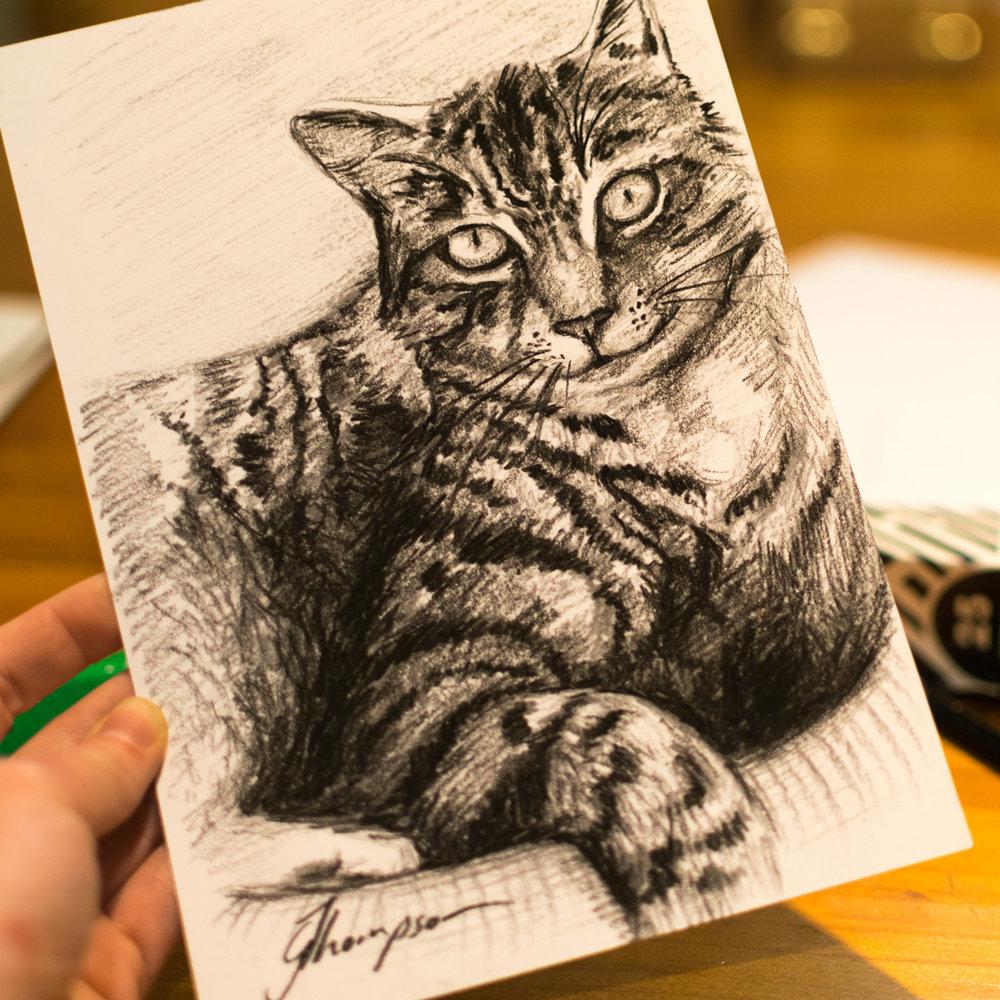 Sketch for Coleen