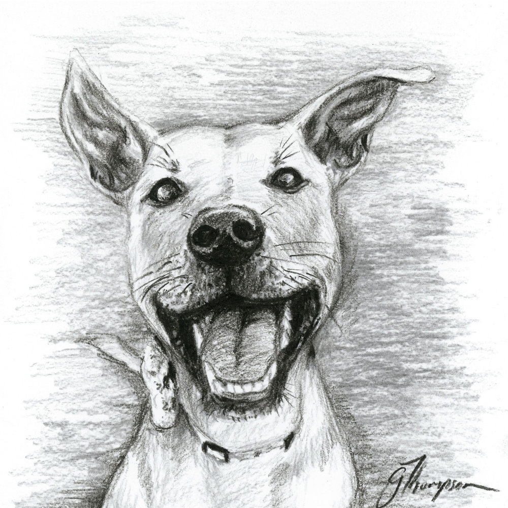 gallery-drawing-kiba-charcoal.jpg