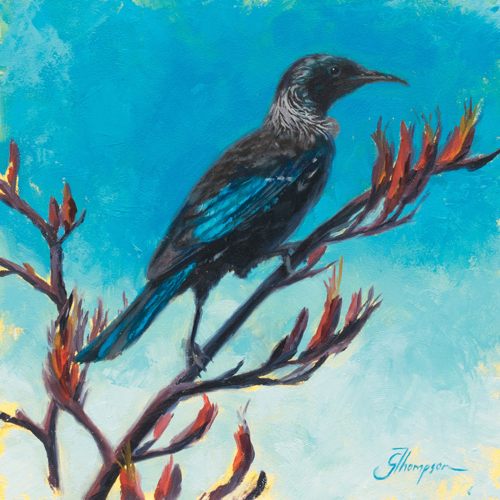 Tui at Patons Rock - Available