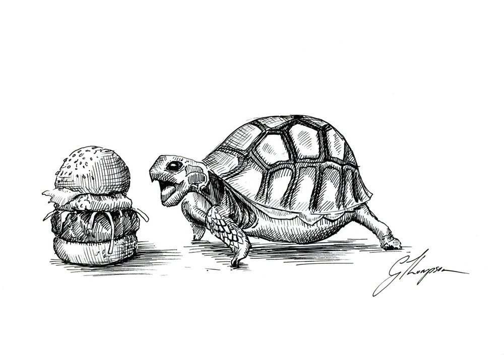Turtle Diet - SOLD