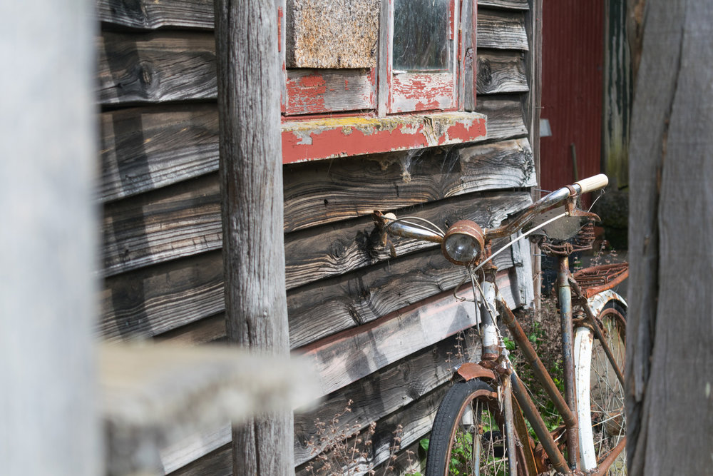 blog-hinewai-artist-retreat-cabin-4.jpg