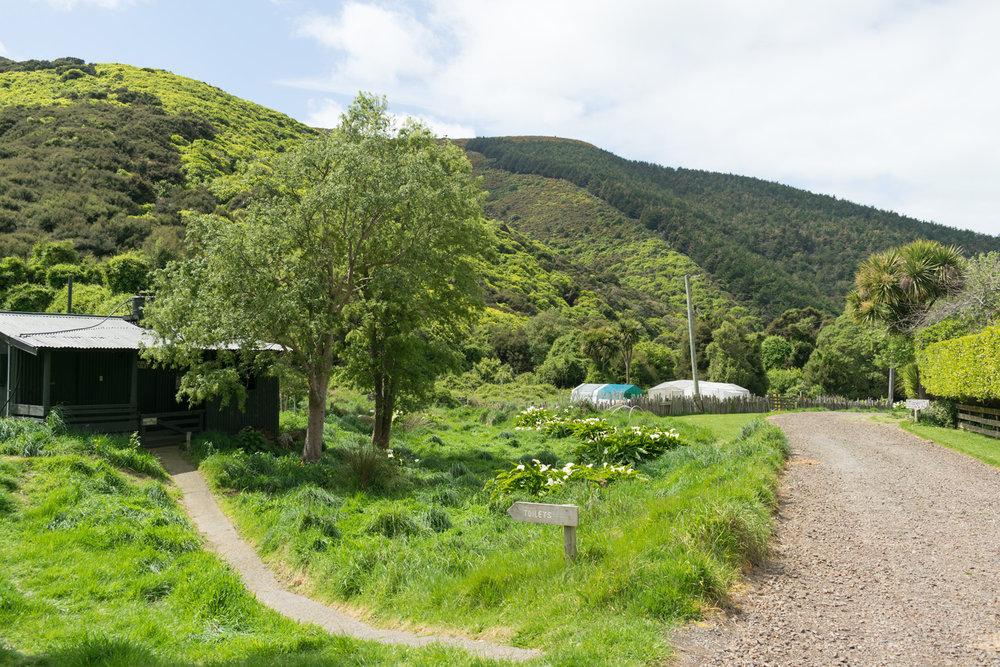 blog-hinewai-artist-retreat-cabin-3.jpg