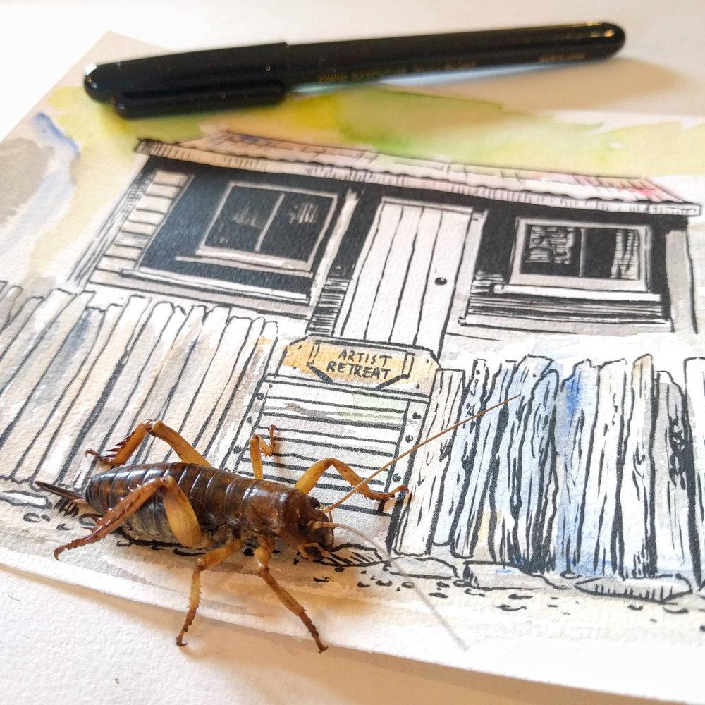 blog-hinewai-artist-retreat-weta-drawing.jpg