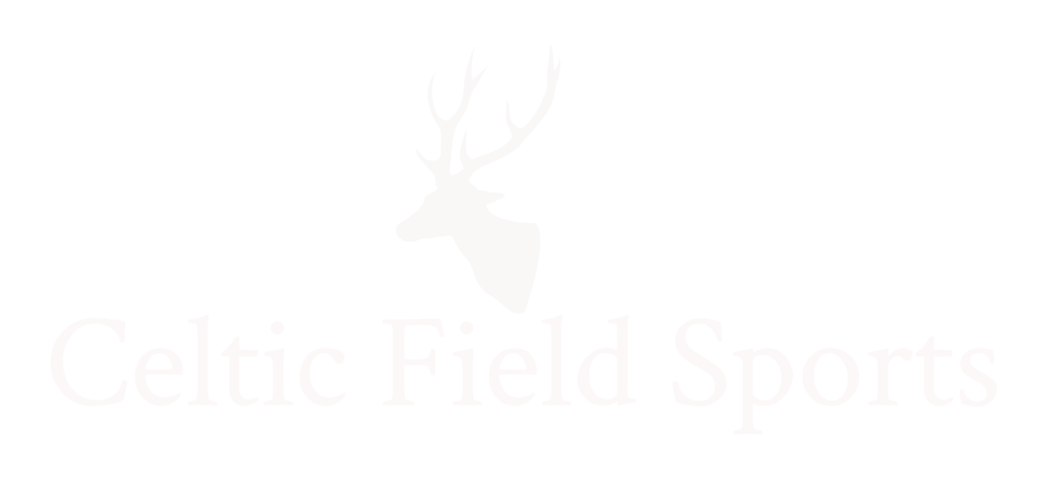 Celtic Field Sports