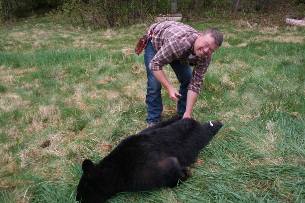 bear hunt canada 015.JPG