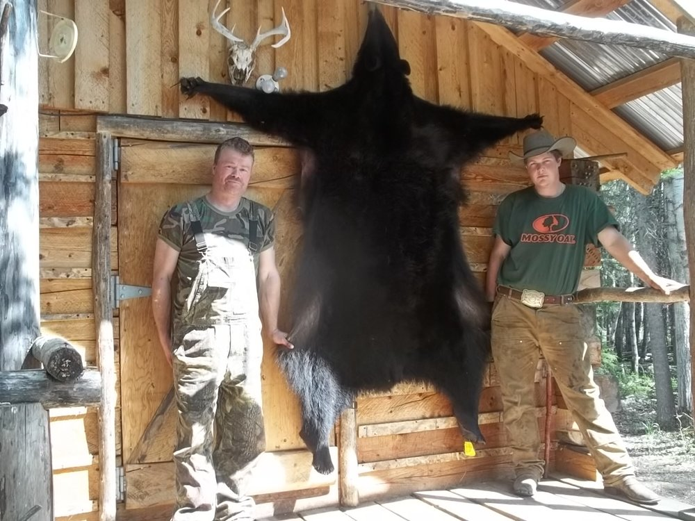 Bear Hunt canada 2012 070.JPG