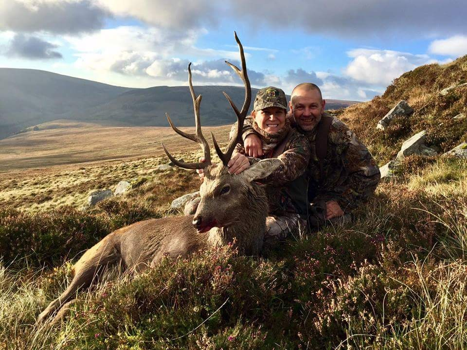 8 Point Sika Stag - Wicklow, Ireland