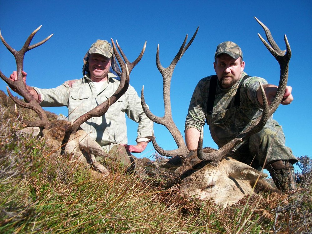 Red Stags Ireland (2).jpeg