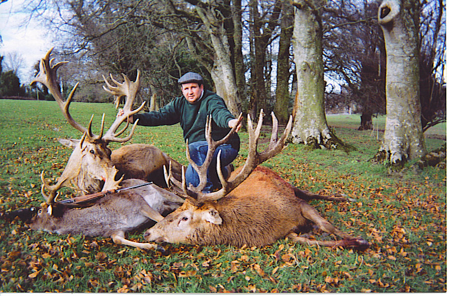 Red Stag Hunting Ireland.jpeg