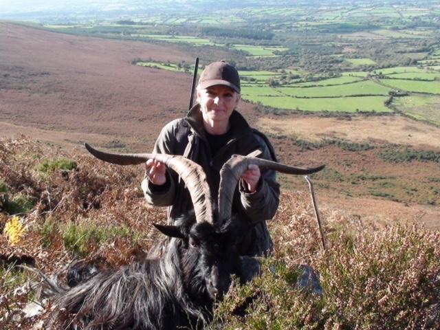 Ibex Ireland (3).jpeg