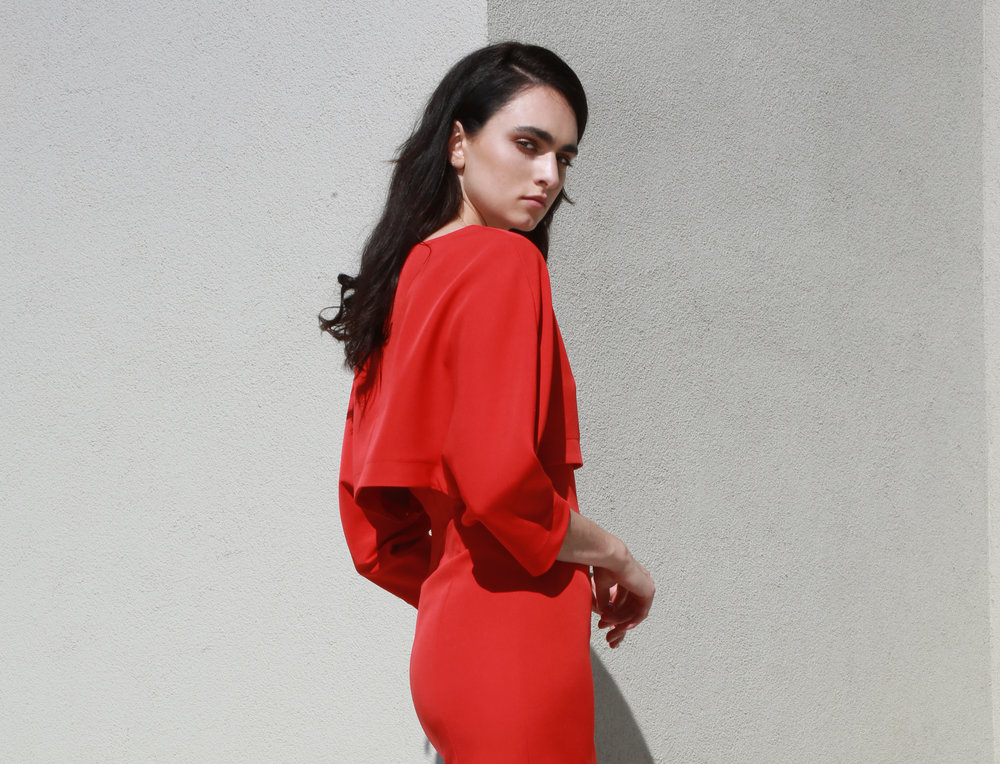 Leah Dress with Sleeve in red €243.00