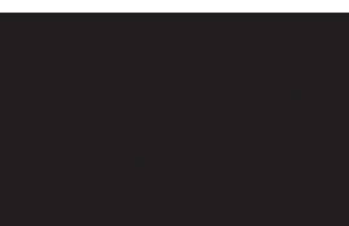 dmc 2.png