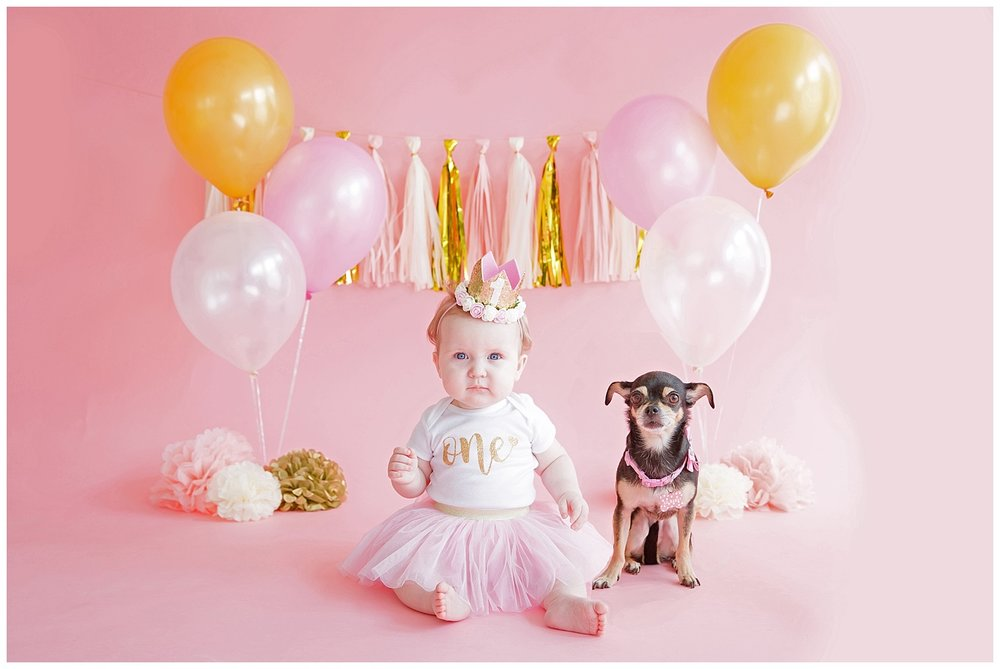 one year old girl on a pink and gold backdrop with her dog in burlington nj