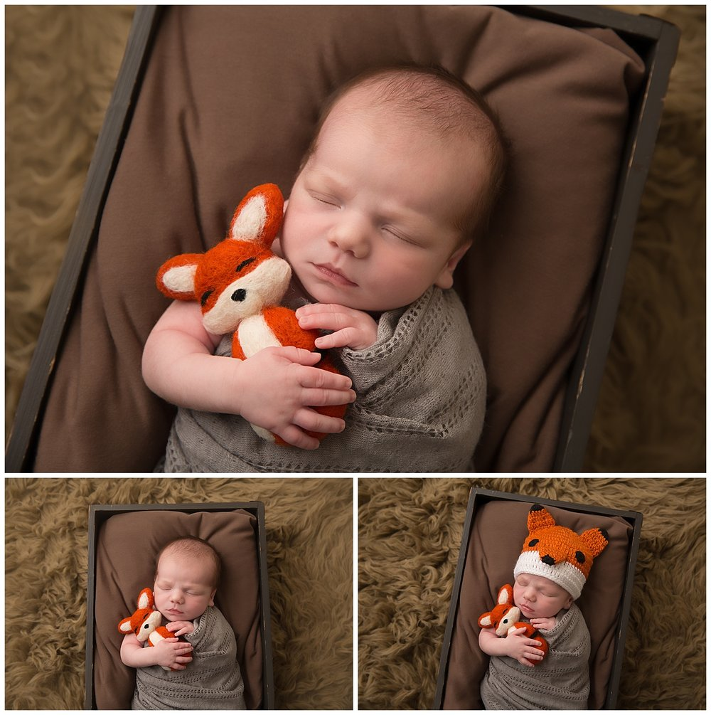 baby boy named parker holding a fox in a boy with brown fabric