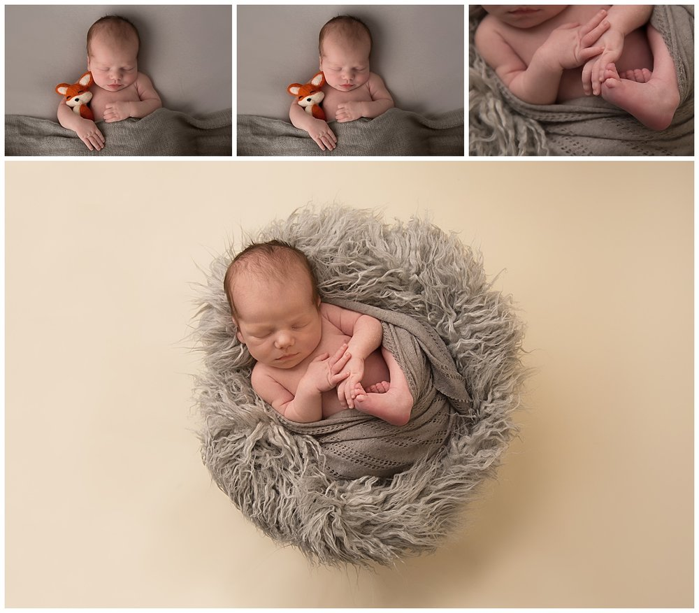 baby sleep for photo shoot in burlington new jersey holding a fox