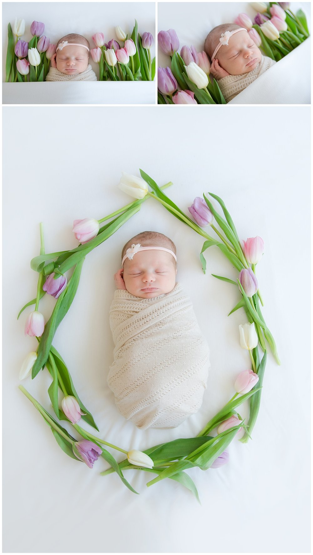 fresh flowers for newborn photos in burlington new jersey