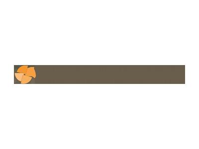 HealthStrategiesGroup.png