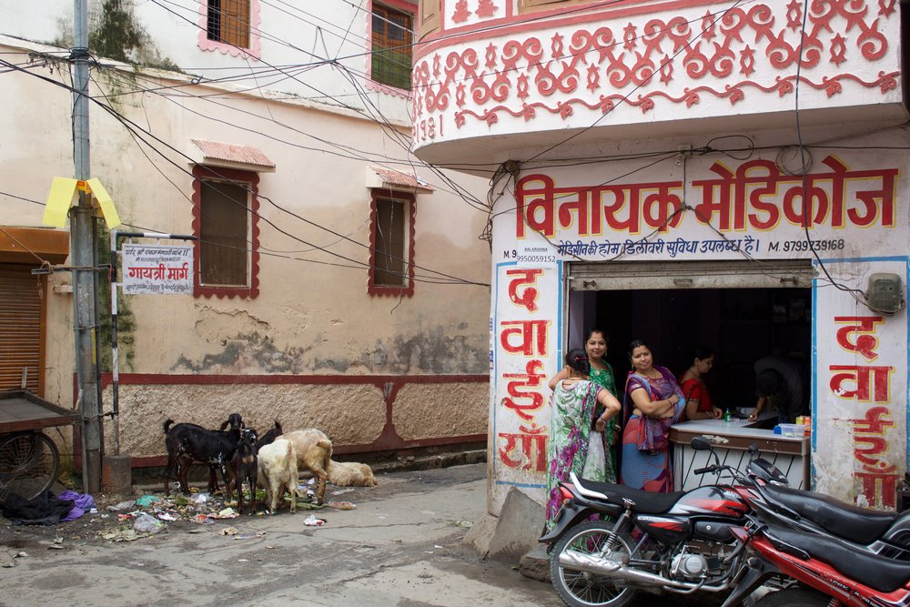 Tucked away in a narrow, four-way junction of a residential quarter near Udaipur's renowned Lake Pichola, one clinic opens its doors for patients on a Sunday.