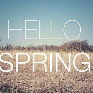 🌷🌱☀️Hello Spring ☀️🌱🌷 #spring #salonbellezzabellevue