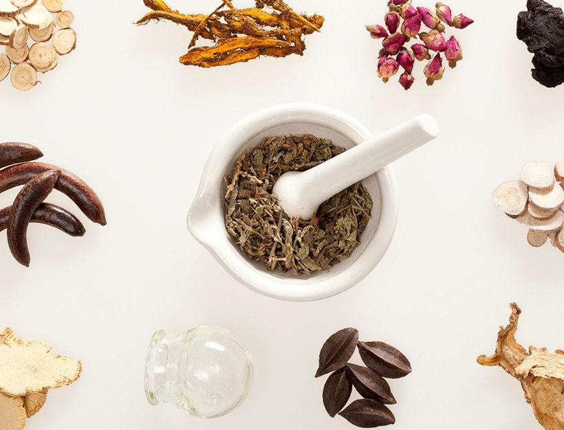 Herb photo.jpg