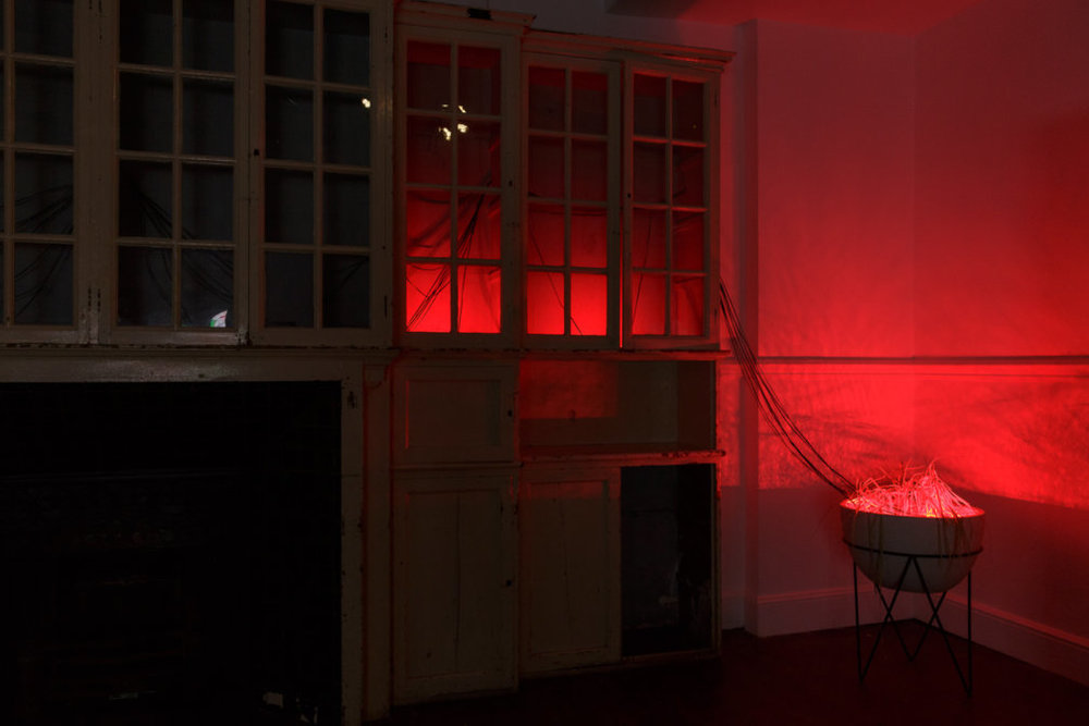 Haroon-Mirza_hrm199_-9-11-11-9-2017-Tim-Bowditch-courtesy-the-artist-and-Zabludowicz-Collection-Low-Res-7215.jpg