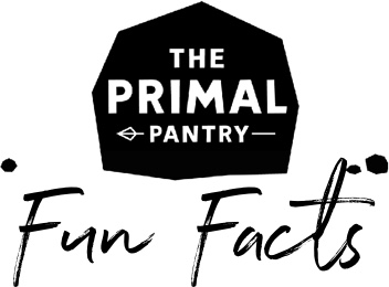 Lilly Wild Primal Pantry