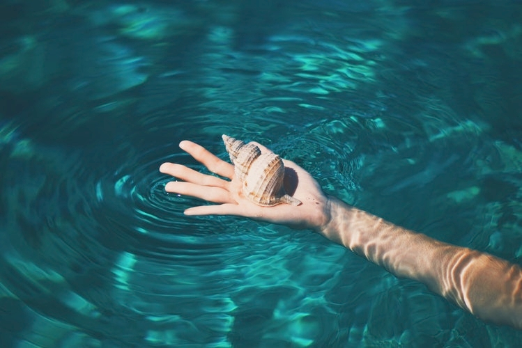 HAND AND SEA SHELL.jpg