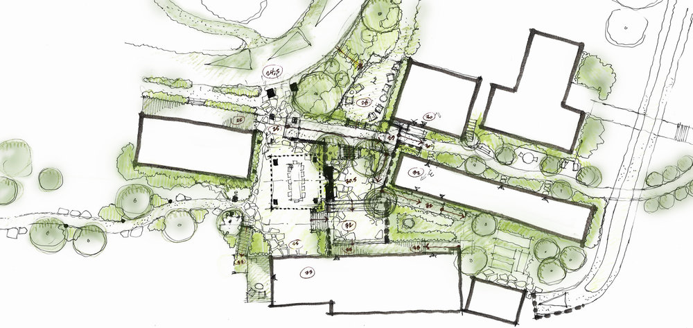 Landscape Architecture Hand Sketch Santa Cruz Island Ten Over Studio San Luis Obispo.jpg