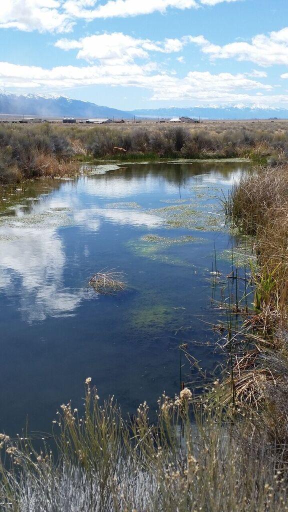 Hot Spring pond.jpg