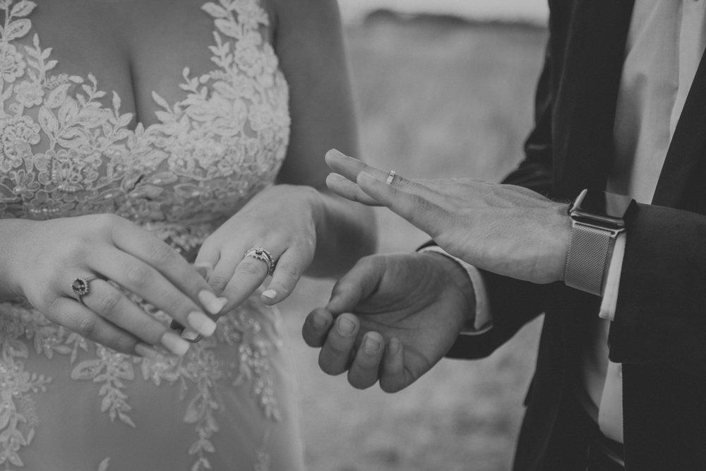 Elegant Country Wedding Cape Town - Bianca Asher Photography-87.jpg