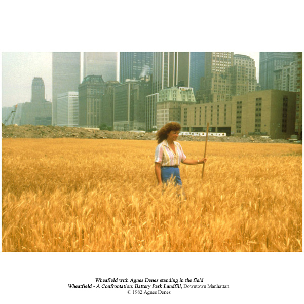 - WHAT WAS THEN A WHEATFIELDBY Georgina Hahn