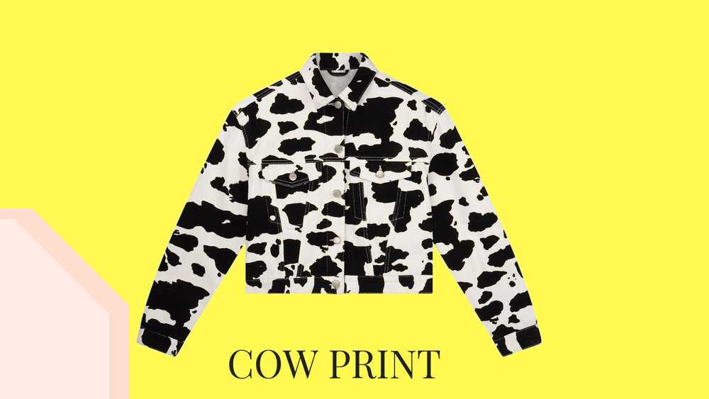 cow print - the edit.jpg