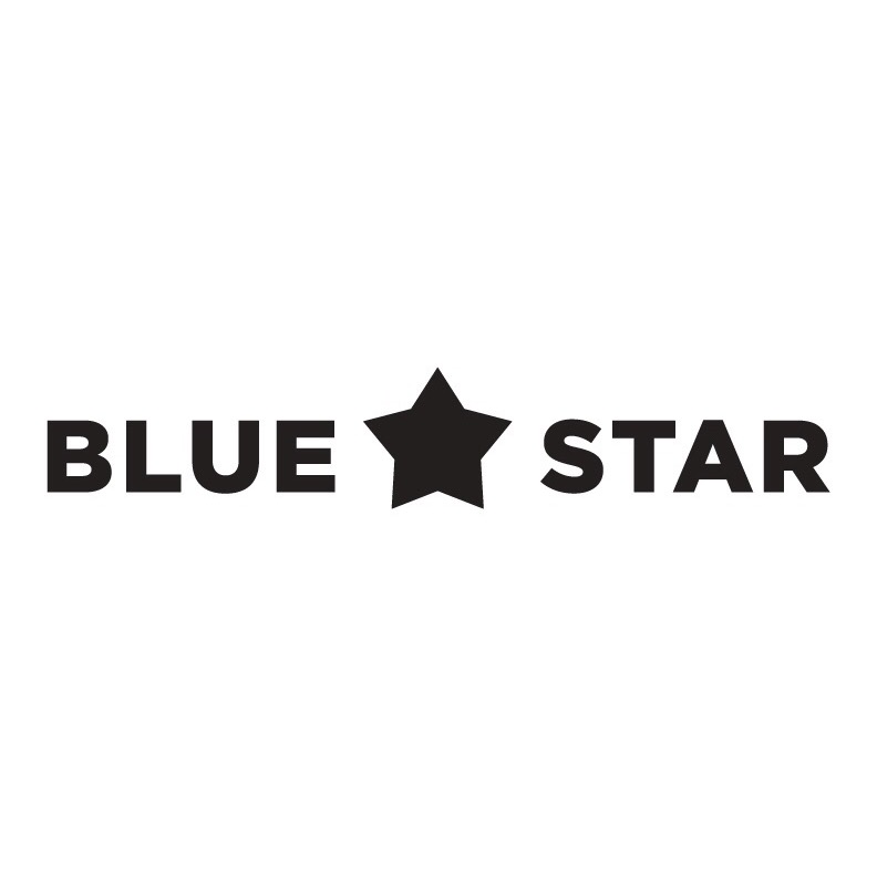 The Social Agency Client Blue Star Arts Complex.JPG