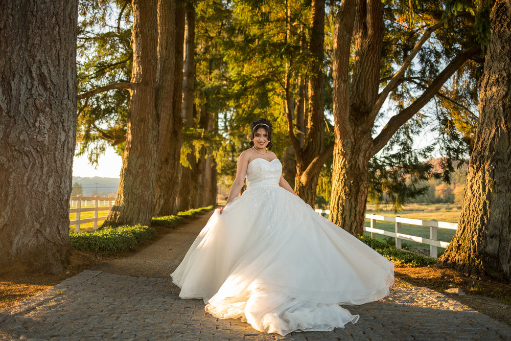 Best Seattle & Snohomish Wedding Photographer