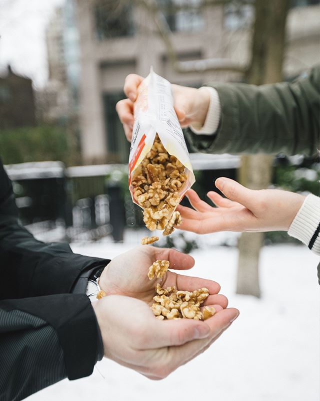 Walnuts are rich in antioxidants and omega-3's, making it a wonderful and healthy snack to share. | #heartlifecanada #heartlifecanada