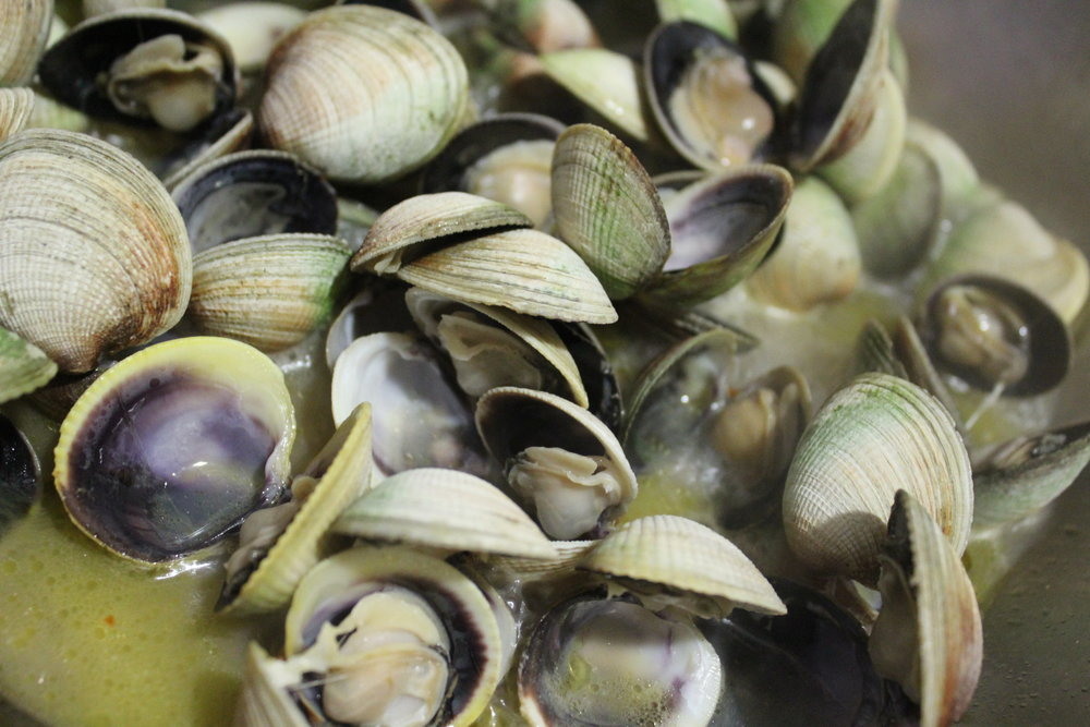 Vongole are the tiny clams needed for spaghetti and clam sauce.