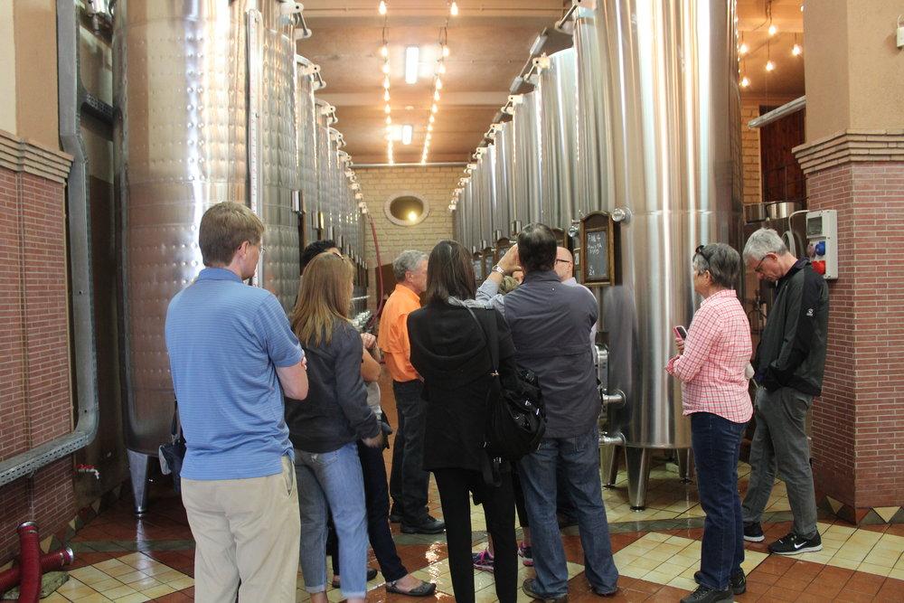 Inside Luigi Moio's fermenting room at Quintodecimo.