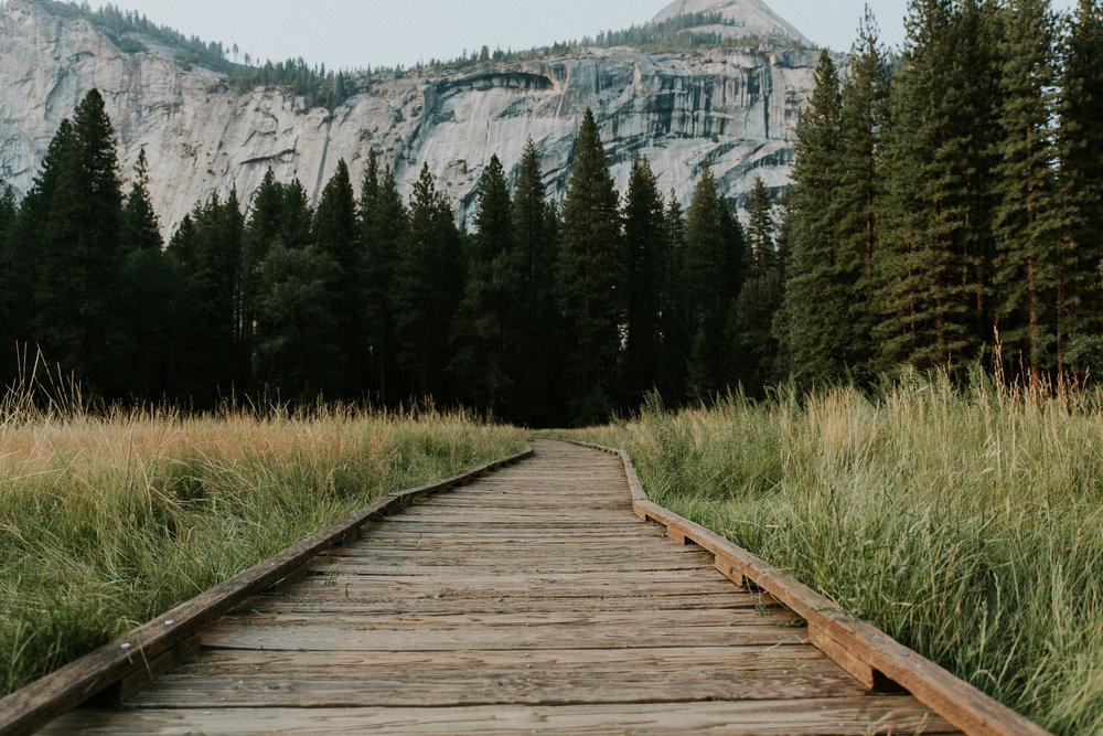 ECPhoto_Yosemite_31.jpg