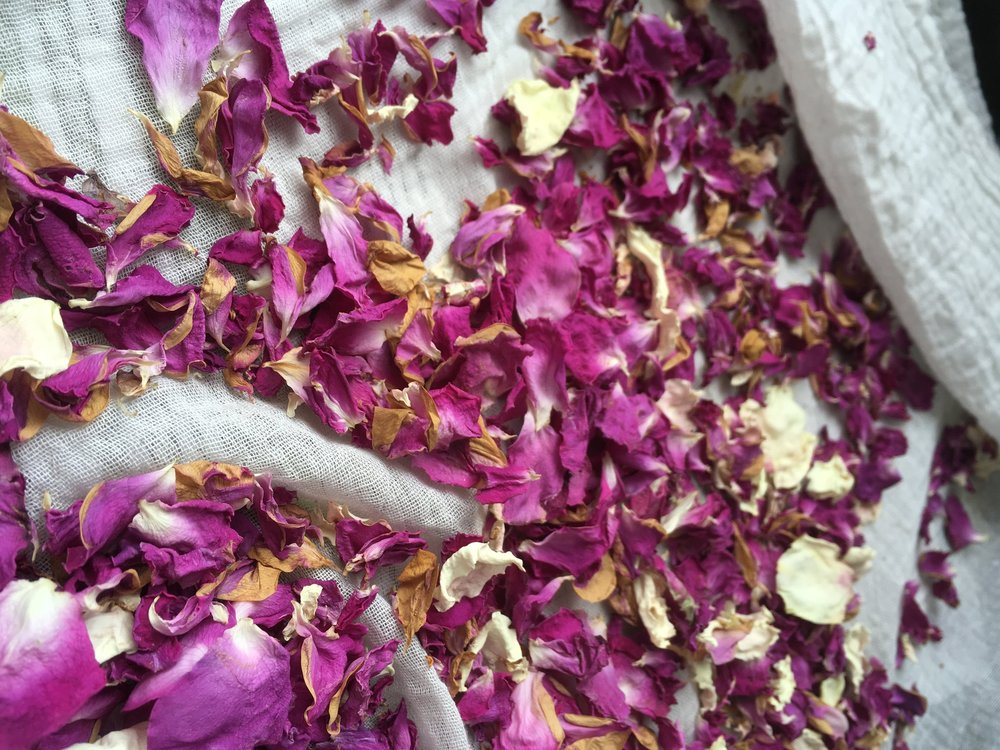 Vibrant colours of dried Rose petals; bright colours imply a good quality dried herb