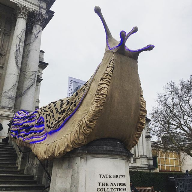"A gardeners (unlikely) friend. Here are the magnificent leopard slugs that have taken over the facade @tate Britain. They have been created by Monster Chetwynd for the winter commission: ""Creatures most people would consider to be an ugly nuisance have been transformed into something wondrous"" 🌱⠀⠀⠀⠀⠀⠀⠀⠀⠀ Did you know that leopard slugs are actually very beneficial to use gardeners. Aside from being beautiful they only really eat dead and rotting plant matter so help to recycle nutrients back into the soil. They also enjoy munching on the other smaller slugs - the ones that are constantly on the prowl for our vulnerable seedlings. If you see these in your garden, make sure you admire their patterning and thank them for keeping the other pesky slugs in check!🌱"