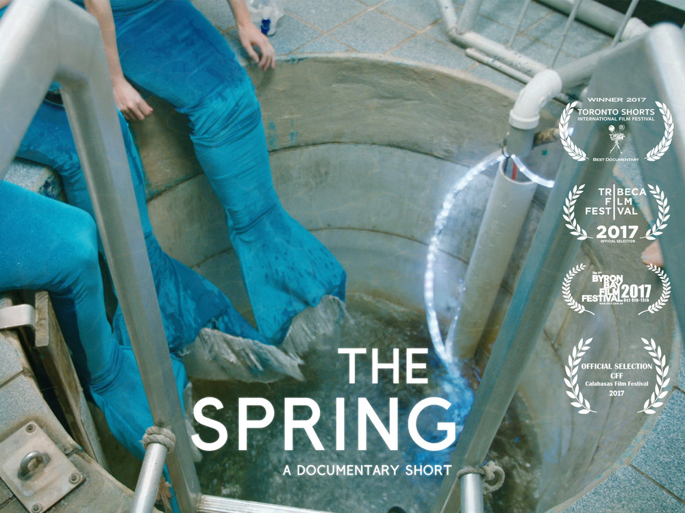 poster43_thespring copy.jpg