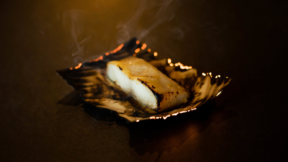 PAGU_campfire black cod by Matt Li (1).jpg