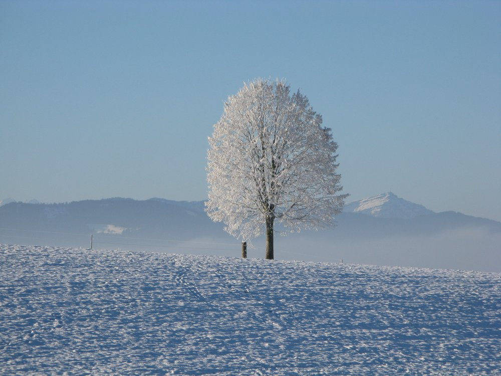 Getting outside to help seasonal affective disorder